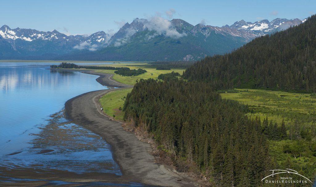 The coast by Silver salmon Creek